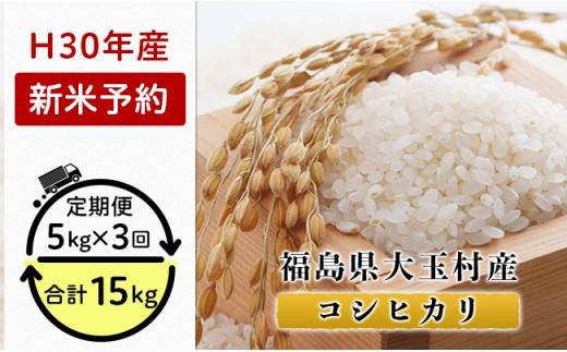 K04【3カ月定期】福島県大玉村産コシヒカリ15kg(毎月5kg×3回お届け)