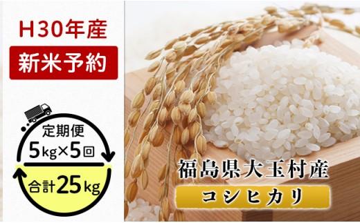 K06【5カ月定期】福島県大玉村産コシヒカリ25kg(毎月5kg×5回お届け)