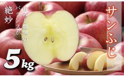A323 サンふじりんご 約5kg(14~23玉)