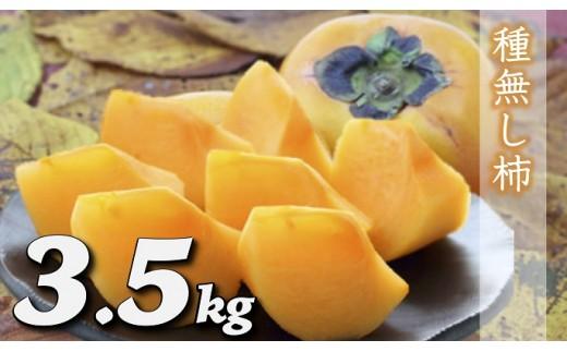 A324 種なし柿 約3.5㎏(15~17玉)