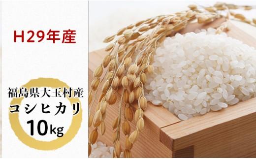 大玉村産コシヒカリ10kg