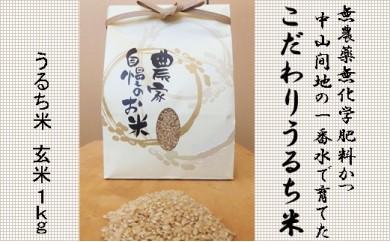 無農薬無化学肥料かつ中山間地の一番水で育てたこだわりうるち米