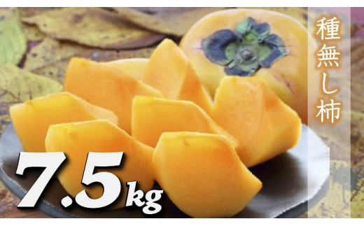 B730 種なし柿 約7.5㎏(28~40玉)