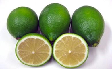 [№4631-1472]ハウスグリーンレモン 2kg