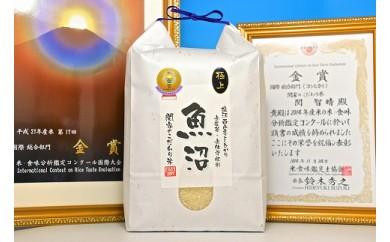 【頒布会】4年連続金賞 最上級 関家のこだわり米30㎏×全12回 無農薬栽培米