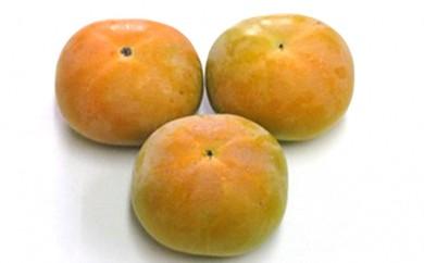 [№4631-1474]まるで梨の食感!!太秋柿(たいしゅうがき)