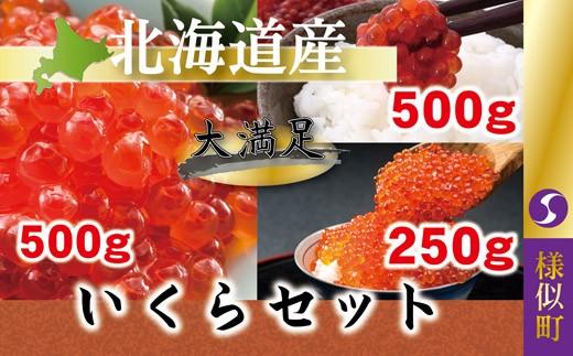 【3001】いくらセット