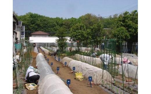 学習型体験農園みのり村