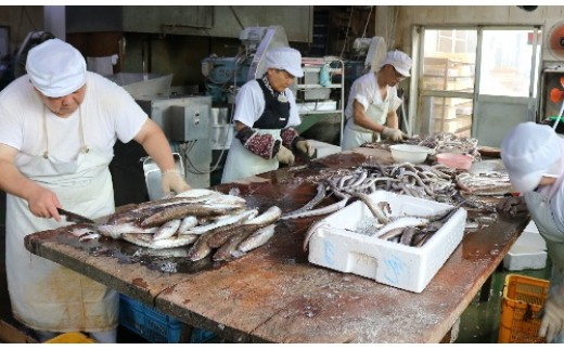 新鮮な魚をさばいてフィッシュカツが作られています