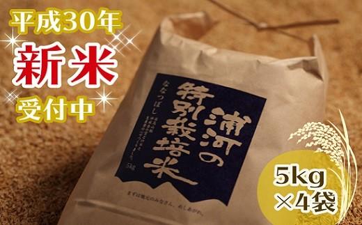 [03-081]浦河の特別栽培米(5kg×4袋)【11月下旬発送】