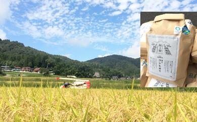 [№5941-0253]平成30年度産新米 特別栽培特A一等米 コシヒカリ「愛発の棚田米」5kg