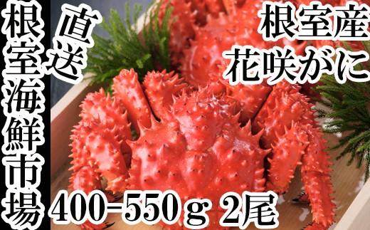 CA-60036 【北海道根室産】根室海鮮市場<直送>花咲ガニ400~550g×2尾