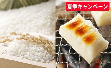 [№5792-0258]【30年産新米】有機JAS栽培米 2種食べ比べセット+白もち1kg