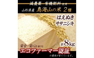 【減農薬・有機肥料】<計8kg> 鳥海山の恵み 庄内米2種食べくらべセット30年産