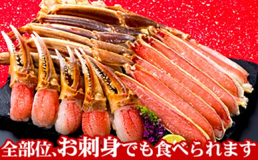 CB-66005 お刺身でも食べられる!カット済み本ズワイガニ1.5kg