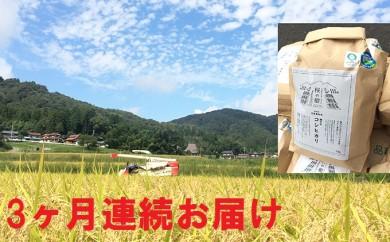 [№5941-0254]平成30年度産新米 特別栽培特A一等米 コシヒカリ「愛発の棚田米」5kg 3ヶ月連続