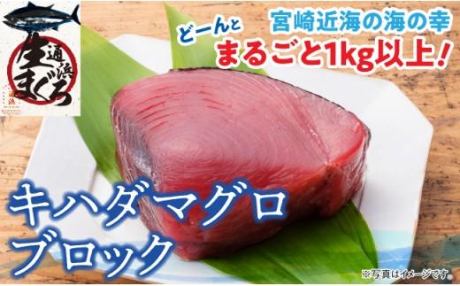 H1701『日向灘海の幸』キハダマグロブロック(生)