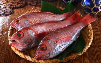 [№5941-0276]面倒な下ごしらえ不要!溢れる脂が絶品の高級魚のどぐろ生姿2尾セット