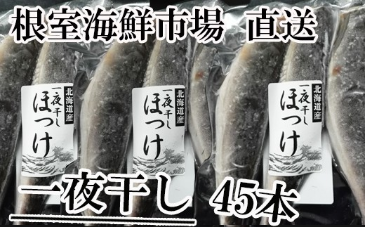 CA-60027 根室海鮮市場<直送>北海道産一夜干し丸干しほっけ45本
