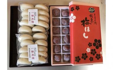 [№5941-0256]一陽来福(白もち)と梅ほし(半生菓子)セット