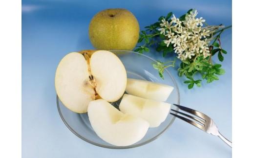 秋間梨園の梨(幸水)5kg