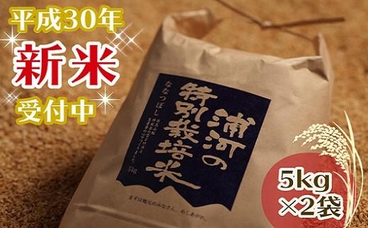 [03-080]浦河の特別栽培米(5kg×2袋)