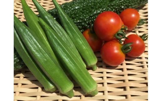 A-23◆高知県安田町からお米5Kgとちょこっと野菜の詰め合わせ