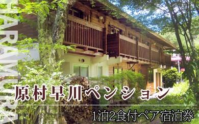 [№5887-0047]早川ペンション ご宿泊券【1泊2食2名様】