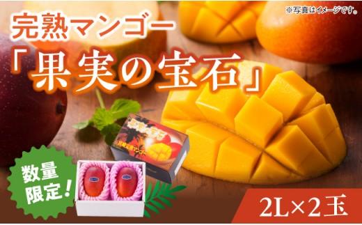 ※2020年初夏~夏発送※完熟マンゴー「果実の宝石」2L×2玉