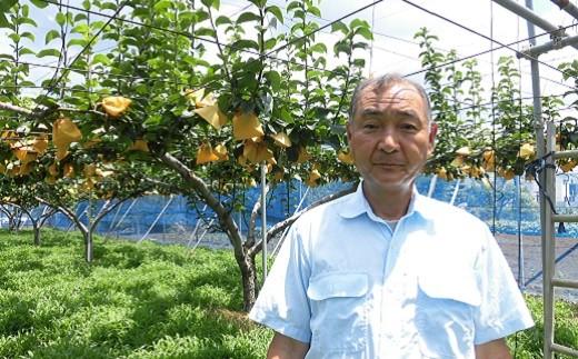 多摩湖梨(幸水)を生産する東大和市果実生産組合の尾﨑組合長