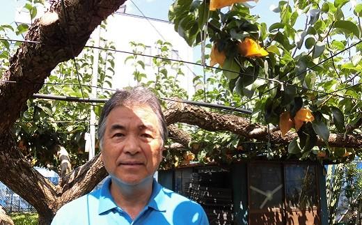 多摩湖梨(幸水)を生産する東大和市果実生産組合の内野副組合長