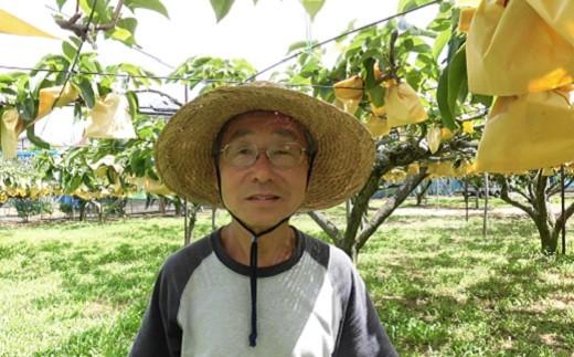多摩湖梨(新高)を生産する梨農家の内野さん