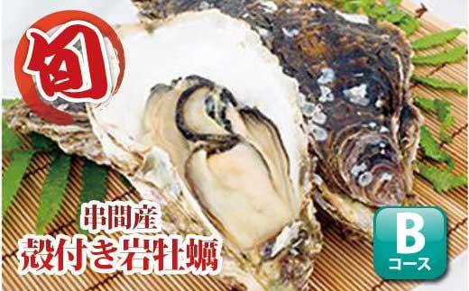 L-4 数量限定!濃厚な味わい【串間産殻付 岩牡蠣 24~28個(加熱用)】