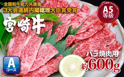 S☆5《600g!》【宮崎牛バラ焼肉用A】