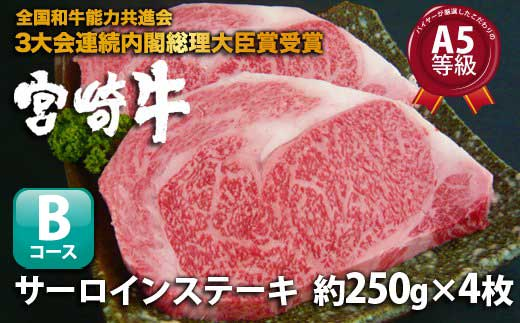S-7《250g×4枚!》【宮崎牛サーロインステーキ】厳選したこだわりA5等級