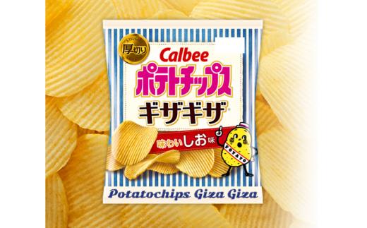 【14013】カルビー ポテトチップス ギザギザ味わいしお味 24袋