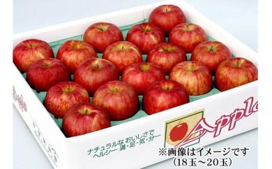 [№5764-0349]りんご サンふじ 18玉~20玉
