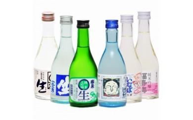 【189】鳥取県の生酒 6銘柄 飲み比べセット
