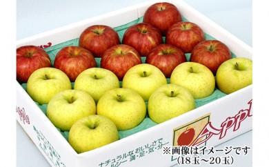 [№5764-0352]りんご サンふじ&王林 18玉~20玉