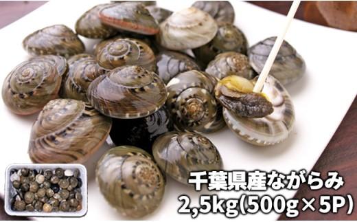 C01-019 千葉県産ながらみ 2.5kg