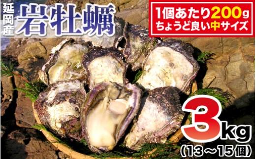 B27 延岡産天然岩牡蠣(生食用)3kg(中)(2019年4月から発送開始)