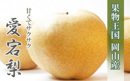 b-0071 岡山産 愛宕梨(あたご梨)約4kg