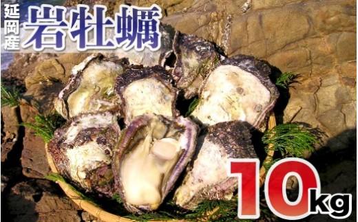 延岡産天然岩牡蠣(生食用)10kg