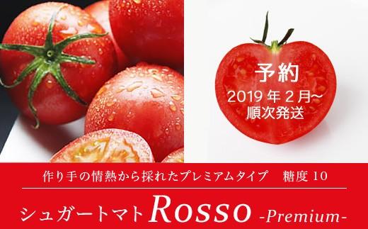 """[№5725-0086]【先行予約】 """"日本一のトマト"""" シュガートマト ロツソプレミアム10"""
