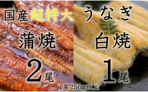 C194 【超特大】うなぎ蒲焼き2本+白焼き1本セット