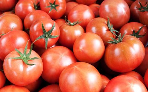 高糖度トマト,フルーツトマト,シュガートマト