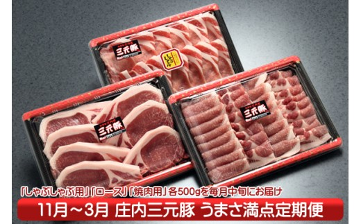 【K-866】庄内三元豚!うまさ満点定期便(11月中旬より発送開始 入金期限:H30.10.25)