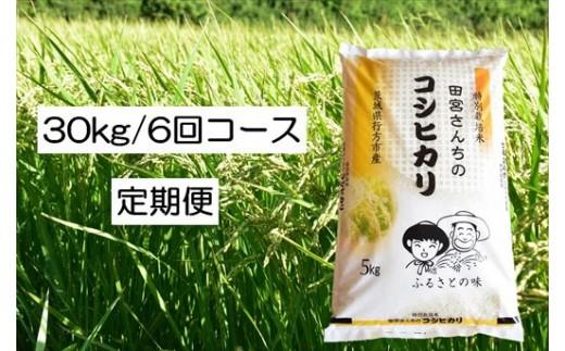 ☆【定期便】田宮さんちのコシヒカリ(5kg×6回コース)