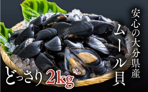 C-08 【産地直送】大分県産ムール貝をどっさり2kg!