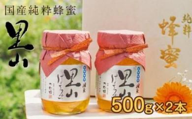 DJ42 国産里山蜂蜜【500g×2本】セット